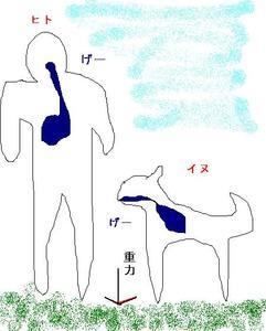 犬がヒトより吐きやすい理由
